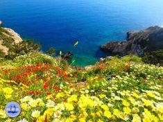 Crete News Greece travel advice Active holidays on Crete News from Crete
