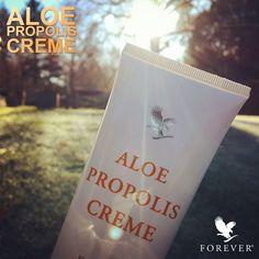 Buiten is het koud en binnen loeit de verwarming... niet fijn voor uw handen. Aloe Propolis Creme met aloë vera, bijen propolis en kamille biedt uitkomst! Een zachte crème met vochtinbrengende en verzorgende eigenschappen, ideaal voor o.a. uw handen. https://www.facebook.com/natuurlijkeproductenvoormensendier/photos/a.507025729369774.1073741840.506829129389434/1323790437693295/?type=3&theater