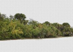 view from by Gobotree, including cutout plants, vegetation, tree:
