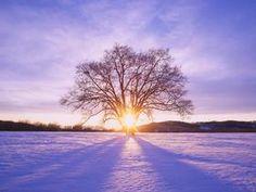 Sunset in winter wallpaper, Sunset in winter Nature HD desktop wallpaper Winter Wallpaper, Scenery Wallpaper, Snow Pictures, Beach Pictures, Winter Sunset, Winter Magic, Widescreen Wallpaper, Mac Wallpaper, Snow Scenes