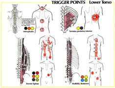 neuromuscular pain relief therapy