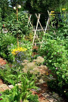 mein Pflanzenreich. Unser Garten. Unser Bauerngarten (potager)