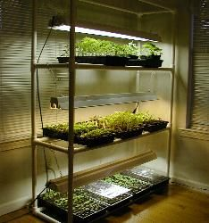 Dyi Pvc Seed Starter System This Would Be Great As A Bat Greenhouse Too For Those Plants That Don T Do Well In Summer S Heat