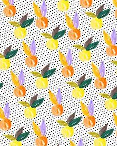 Colorful Citrus II.