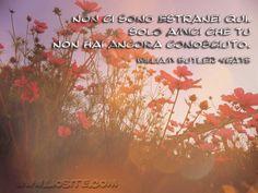 """W B. Yeats - Non ci sono estranei qui.. Siamo tutti d'accordo?    Andate a vedere la poesia che ho appena condiviso nell'altra board """"Parole in libertà"""", con audio e video, merita davvero!  #Yeats, #amici, #amicizia, #liosite, #citazioniItaliane, #frasibelle, #ItalianQuotes, #Sensodellavita, #perledisaggezza, #perledacondividere, #GraphTag, #ImmaginiParlanti, #citazionifotografiche,"""