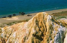 Horses on the bank of Lake Zaysan, Kazakhstan (© Pavel Filatov/Alamy)