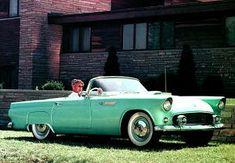 Ford Thunderbird, 1955 MY technical data and info Ford Thunderbird, Motor Car, Convertible, 1950s, Cars, Infinity Dress, Car, Automobile, Autos