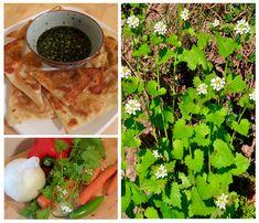 The Foraged Foodie: Foraged Garlic Mustard Gyoza Recipe