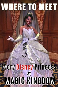 Where to find Every Disney Princess at Magic Kingdom Want to check off every Disney Princess from your meet and greet list? Here's where to find every Disney Princess in Magic Kingdom at Walt Disney World! Disney Resorts, Walt Disney World Vacations, Disney Parks, Orlando Disney, Family Vacations, Disney Cruise, Family Travel, Disney World Characters, Disney World Magic Kingdom