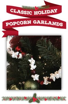 6 holiday decorations that really pop | easy DIY popcorn decorations | This holiday season, pull that extra bag of popcorn out of your pantry and transform your kernels into easy holiday decorations! | how to make popcorn garland