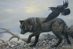 Keepers And Watchers:Raven Rules Over Rural Areas - Watching And Waiting.Wolf Wonders The Wild -Hunter And Scavenger.Both Combined To Coexist With Each Other. Helpful From Above And Masterful … Wolf Spirit, Spirit Animal, Animals Beautiful, Beautiful Creatures, Rabe Tattoo, Raven And Wolf, Lone Wolf, Raven Art, Crows Ravens