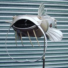 Here's a big smiley catfish #hubcaps #recycle #catfish #angling