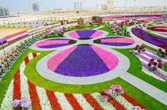 New attraction in Dubai – The worlds biggest Flower Garden – 32 PHOTOS