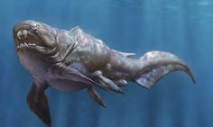 Годзилла наяву: вымершие виды, поражающие воображение (10 фото) http://nlo-mir.ru/evolucia/47626-godzilla-najavu.html