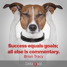 """#quotes """"Success equals goals; all else is commentary"""" - Brian Tracy Jack Russells, Blogging, Teacher Problems, Education Canine, Dog Dental Care, Dog Care, Dental Phobia, Dog Insurance, Dog Anxiety"""