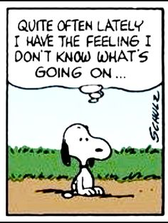 Well said, Snoopy Snoopy Images, Snoopy Pictures, Funny Pictures, Snoopy Quotes, Cartoon Quotes, Funny Quotes, Peanuts Quotes, Charlie Brown Quotes, Charlie Brown And Snoopy