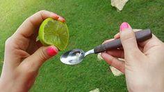 Esprema um limão e misture com azeite! Depois disso nunca mais vai parar de o usar! É fantástico! - http://www.receitasparatodososgostos.net/2017/01/16/esprema-um-limao-e-misture-com-azeite-depois-disso-nunca-mais-vai-parar-de-o-usar-e-fantastico/