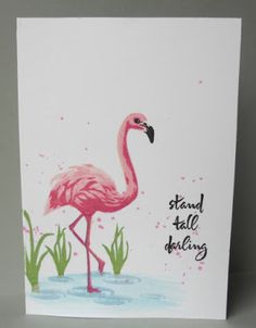 hero arts flamingo stamp and die Hero Arts Cards, Bird Cards, Stand Tall, Beach Themes, Stampin Up Cards, Birthday Cards, Card Making, Poster, Paper Crafts