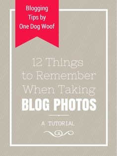 12 Things to Remember When Taking Blog Photos - One Dog Woof