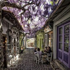 Sipping coffee with friends in Santorini, Grecia Wisteria! Places Around The World, Oh The Places You'll Go, Places To Travel, Places To Visit, Around The Worlds, Small Places, Dream Vacations, Vacation Spots, Vacation Destinations