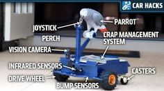 This Man Built A Robotic Car To Quiet His Annoying #African #Grey #Parrot