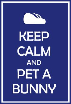 """So I'm actually not a huge fan of the onslaught of """"Keep Calm"""" phrases but... this one has a bunny..."""