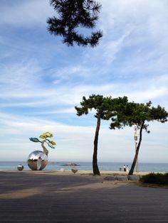 kyungpo beach