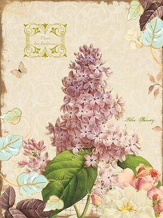 Terri Conrad #flowers