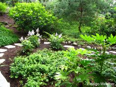 Image detail for -In the span of a couple of hours, all of the ground covers were mowed ...