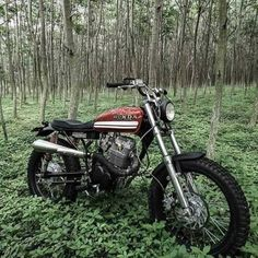 Discover a number of my favourite builds - unique scrambler bikes like Harley Davidson Scrambler, Tumblr, Dirt Bikes, Car Insurance, Bobber, Atv, Motorbikes, Yamaha, Steampunk