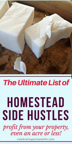 52 Ways to Make Money on a SMALL Homestead - Celebrating a Simple Life