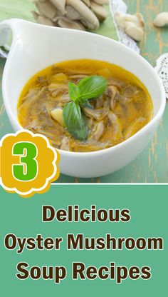 3 Delicious Oyster Mushroom Soup Recipes You Should Try #MushroomSoupRecipes