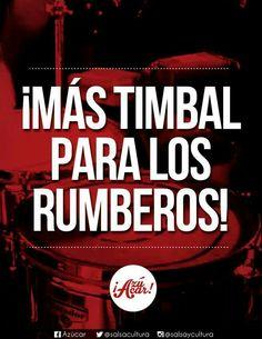Timbal Salsa Musica, Salsa Bar, Salsa Bachata, Puerto Rican Culture, Salsa Dancing, Puerto Ricans, Spanish Quotes, Darwin, Percussion