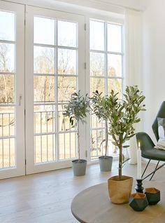 Inspiration - Find inspiration til dine vinduer og døre - Rationel Terrace, Diy And Crafts, Windows, Dining, Kitchen, Home Decor, Decorating, Plants, Lawn And Garden