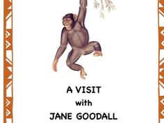 An English primatologist, Jane Goodall, has helped to change the attitudes people had toward animals, specifically the chimpanzee. Map Activities, Science Resources, Teaching Resources, Middle School Art, Art School, High School, Script Reader, Teacher Page, Teaching Channel