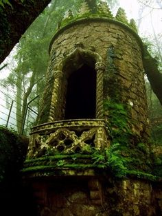 """"""" Medieval tower consumed by Hedera helix ( ivy ) I love how nature destroys beuaty in such a slow manner and by doing so, makes things look even more beautiful. """""""