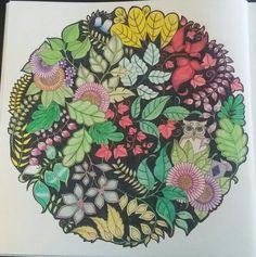 Colored By S Field Johanna Basford Enchanted Forest JohannaBasford EnchantedForest