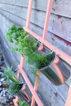 DIY Trellis Herb Garden by @cydconverse featuring @valsparpaint