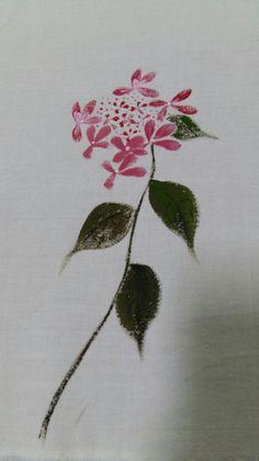 낭아초란 이름은 첨 들어 본다~그렇지만 시골에서 마니 봤던 풀꽃이다^^산수국~수국보다 꽃잎이 작지만 이...