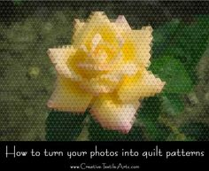 This free software program will take the pain out of the design process and allow you to easily turn your photos into pieced or applique quilt patterns in no time at all.