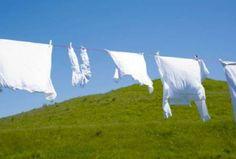 Φυσικό Λευκαντικό για τα Ρούχα σε συνδυασμό με τον ήλιο δίνει ακόμη πιο έντονη λευκότητα, σε αντίθεση με το χλώριο, που ο ήλιος το κιτρινίζει.