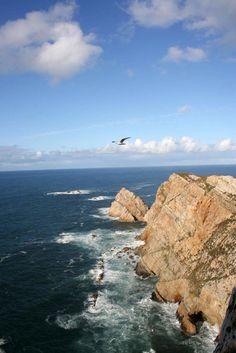 Cabo Peñas, en los alrededores de nuestra casa... Water, Outdoor, Home, Paisajes, Gripe Water, Outdoors, Outdoor Games, Outdoor Living