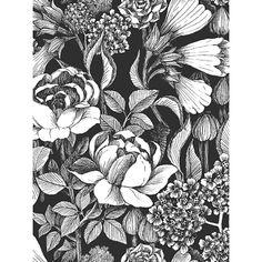 Buy Marimekko Oodi Wallpaper, 17920 Online at johnlewis.com