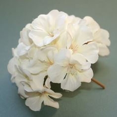 1 Creamy White Geranium Bunch  Full Head  by SilkInspirations