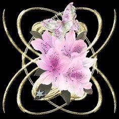 """Desgarga gratis los mejores gifs animados de flores. Imágenes animadas de flores y más gifs animados como gracias, ángeles, animales o nombres"""""""