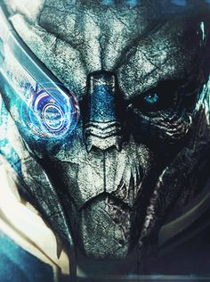 Garrus, your face is backwards