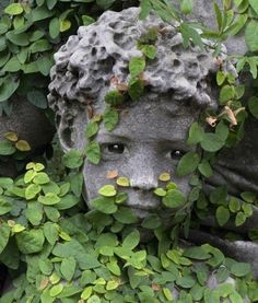 marble or doll-eyed statue  --  Gardens in the Sun