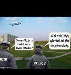 Funny Memes, Jokes, Chuck Norris, Haha, Scorpion, Husky Jokes, Ha Ha, Memes, Hilarious Memes