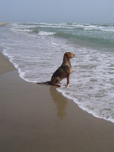 Pondering the vastness of the sea.... and seeing the other side.