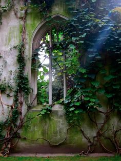 London: St Dunstan's in the East, leafy vines filter the sunlight in place of stained glass.